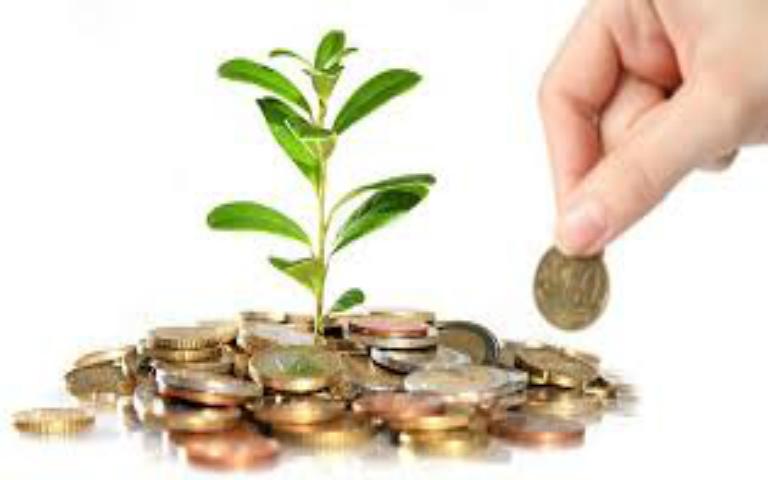 Conseguir Recursos Económicos para la investigación-R+SCAs